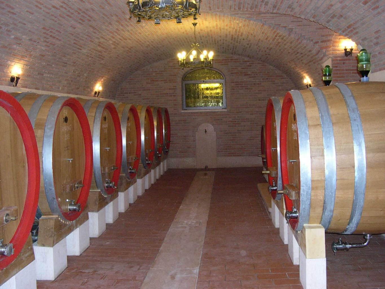 Consorzio Tutela Vini Valpolicella - Ucraina - settembre 2019