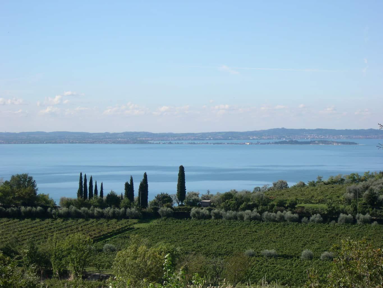 Lago di Garda e Vigneti