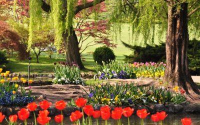 Un'idea per il weekend? Il Parco Giardino Sigurtà a Valeggio sul Mincio. Un viaggio nella natura alla ricerca di relax, a pochi km dal lago di Garda