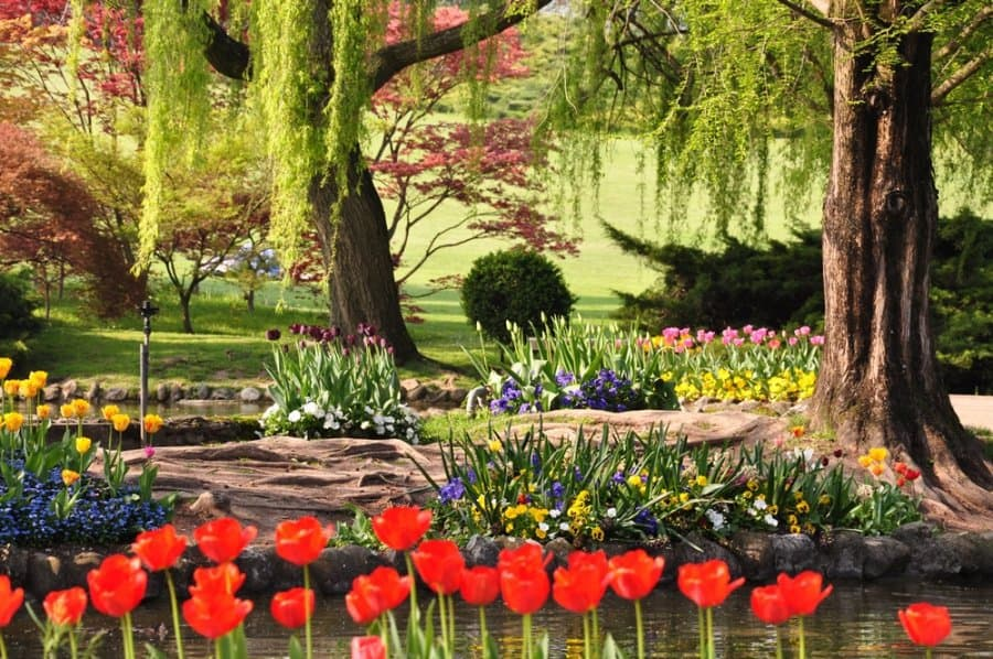 Parco giardino Sigurtà (Valeggio sul Mincio)