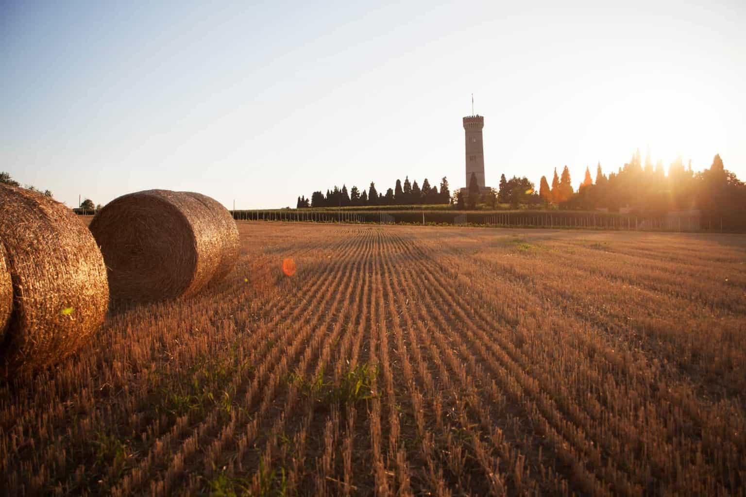 Torre di San Martino della Battaglia_foto Jessica Zufferli