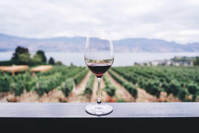 vini veronesi - vino bardolino