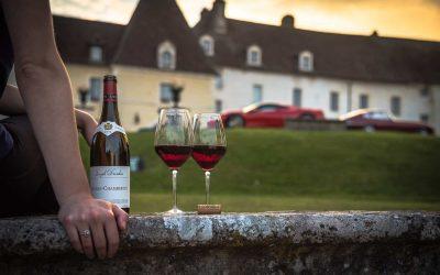 Vino naturale, i produttori puntano su marchio di garanzia e qualità eccellente