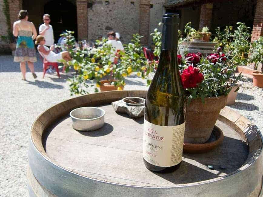 Cicloturismo - itinerari fra vino e cultura - Verona, Custoza e Valpolicella