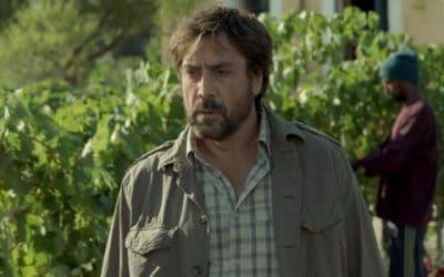 """Cinema e Vino: """"Tutti lo sanno"""", con Penelope Cruz. Un film noir uscito al cinema, fra segreti e drammi. Sullo sfondo il vino e la fatica in vigna"""