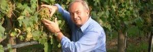 Leonildo Pieropan - vino Soave - Vignaioli Indipendenti