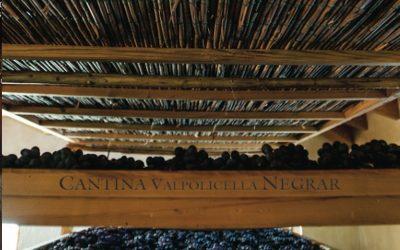 Recioto, oggi convegno alla Cantina Valpolicella Negrar. L'85° anniversario festeggiato con l'Amarone Domìni Veneti 2013