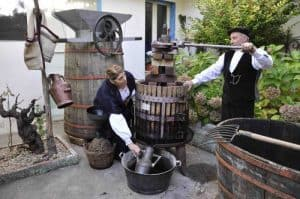Vino artigianale - vino naturale - Faenza 2018 - Back to the Wine - Ritorno al vino