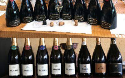 Conoscere il vino a Mantova tra corsi per sommelier, assaggiatori e degustazioni