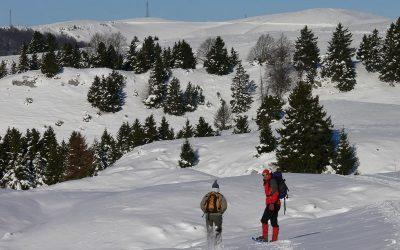 Lessinia: weekend in montagna con neve in quota, luoghi naturali da visitare, Spumante Lessini Durello e vini Valpolicella