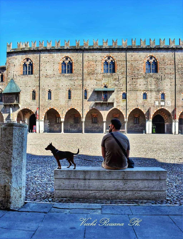 Cosa vedere a Mantova, Palazzo Ducale