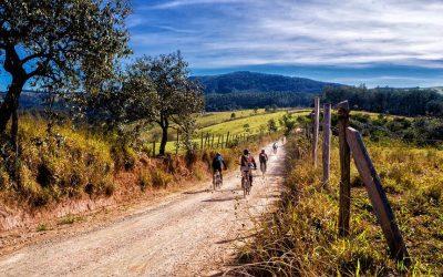 Valpolicella in bicicletta: due itinerari tra le ville venete e i vigneti nella terra dell'Amarone