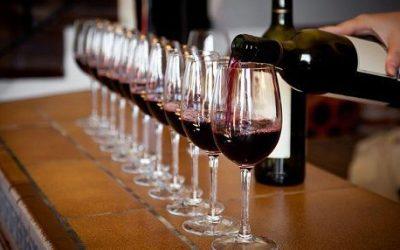 Come comprare vino su internet per i tuoi giorni di festa. L'enoteca Vinopuro: guarda vini, garanzie e tempi di spedizione