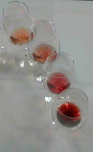 I Vini Rosa più intensi in degustazione alla presentazione della Guida Slow Wine I Migliori 100 Vini Rosa d'Italia