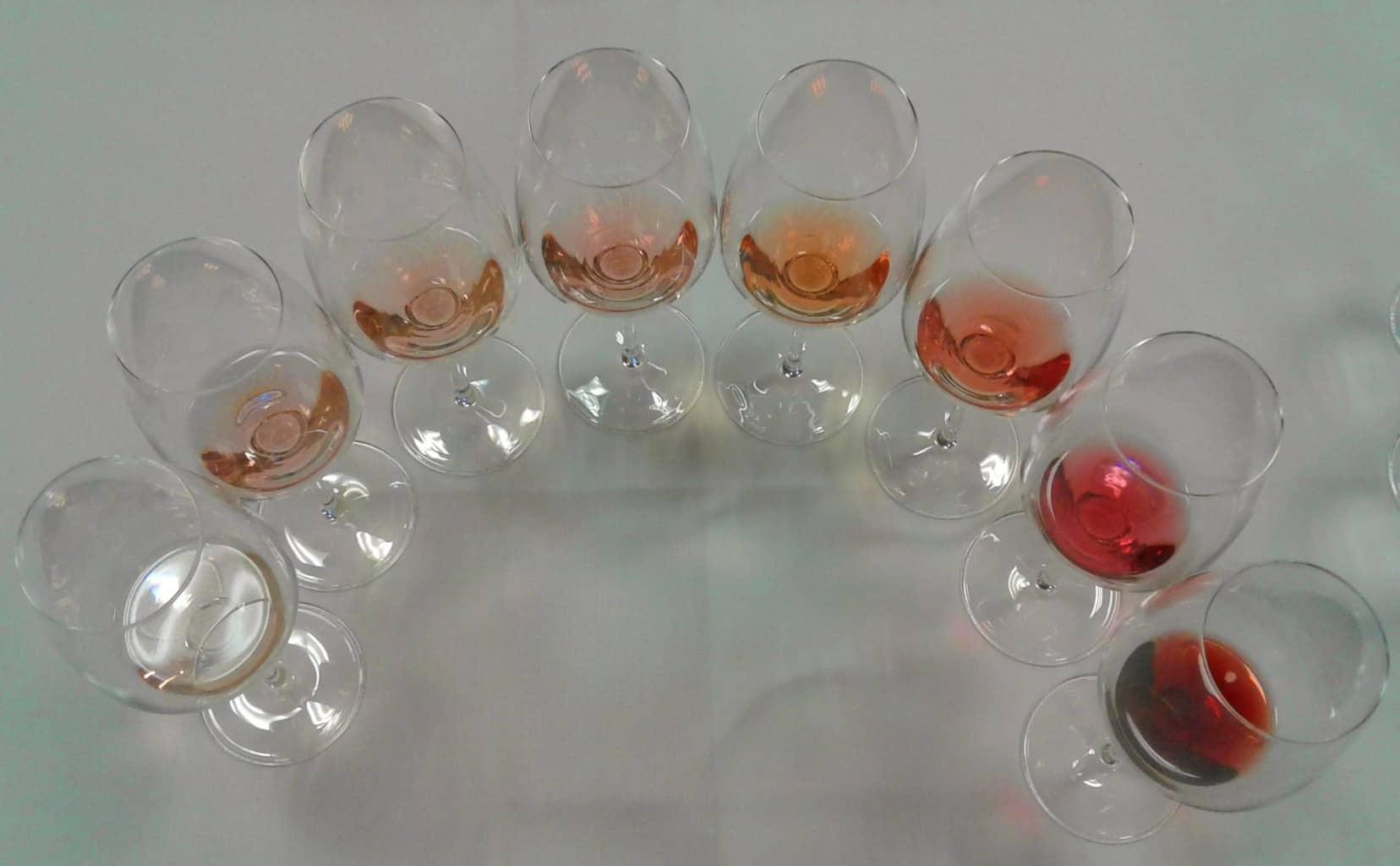 Degustazione cromatica, dal rosa più tenue al più intenso, durante la presentazione della Guida Slow Wine I Migliori 100 Vini d'Italia, a Vinitaly 2019