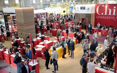 Vinitaly 2019: appointments, news and curiosity among the stands of the wine fair in Verona (7-10 April)