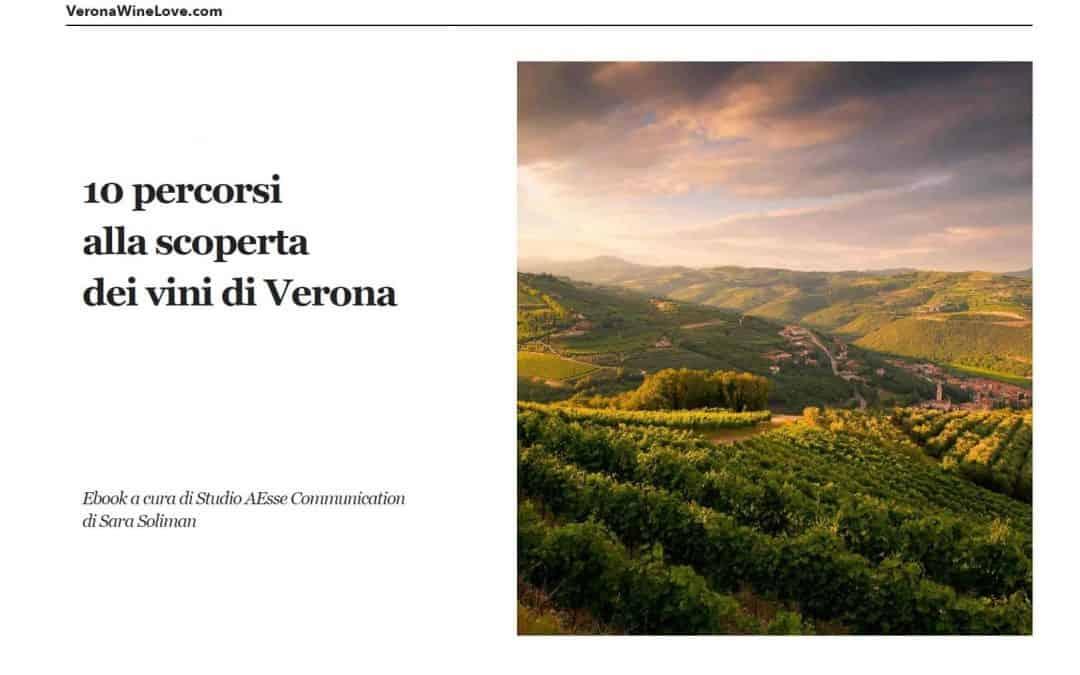 """Cosa vedere a Verona: """"10 percorsi alla scoperta dei vini di Verona"""" e dell'enoturismo. Ebook in regalo a chi si iscrive alla newsletter"""