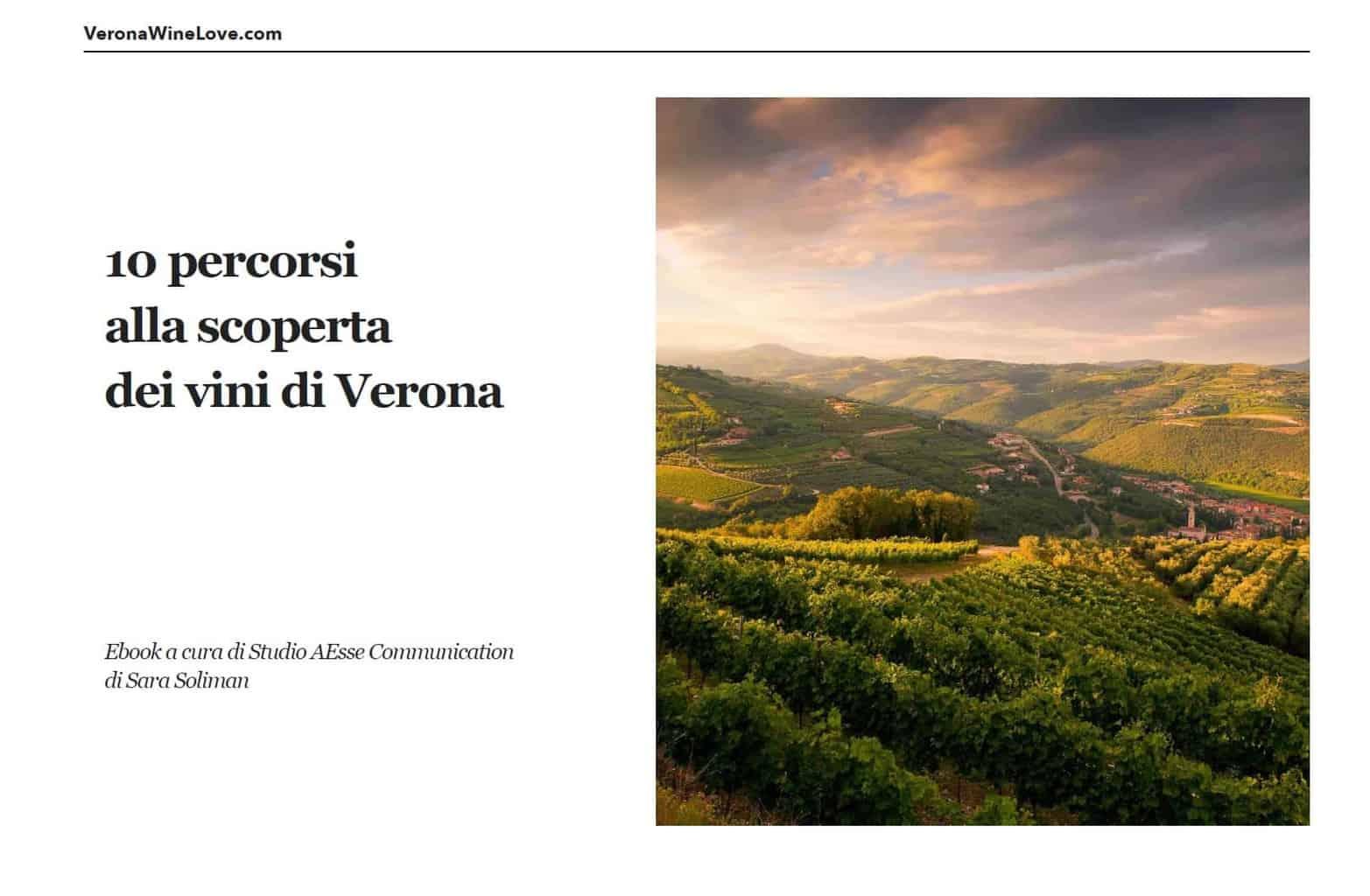 Enoturismo - Ebook di Verona Wine Love sulle Strade del Vino e i percorsi di enoturismo nella provincia di Verona - 2019