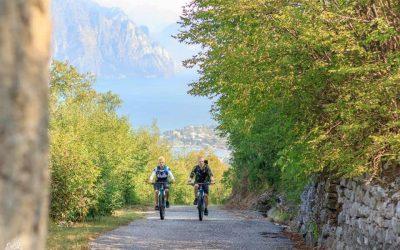 In bicicletta sul Lago di Garda: da Peschiera a Verona, a Mantova e sul Monte Baldo. E, per chi ama il buon vino, una sosta in cantina