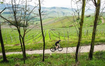 In bicicletta e a piedi tra Verona e il Lago di Garda: i consigli di VeronaWineLove.com per tornare a fare attività all'aperto