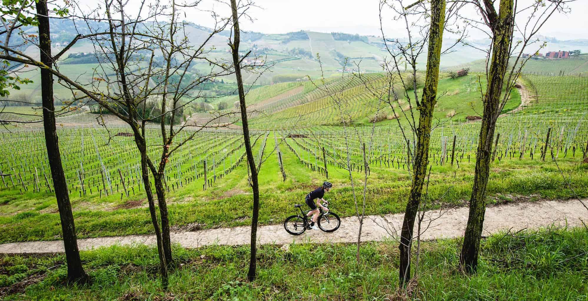 Bicicletta in Valpolicella