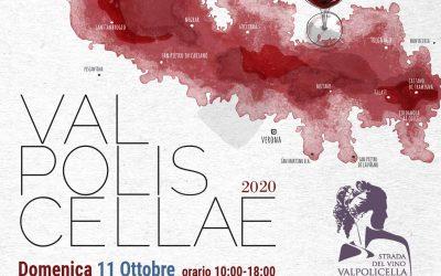 Val Polis Cellae 2020: domenica 11 ottobre cantine aperte, degustazioni, sapori e cultura in Valpolicella