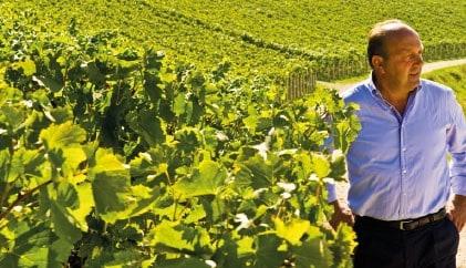 Vini di eccellenza. Monte Lodoletta Amarone della Valpolicella Docg Dal Forno 2012. Leggi la presentazione dei sommelier dell'enoteca online Vinopuro