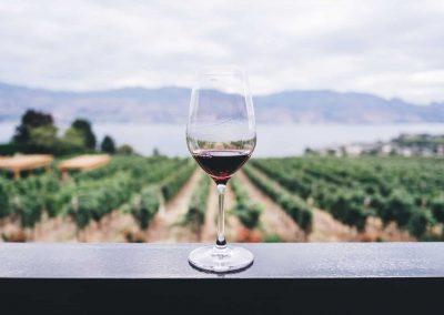 Vini & Territori