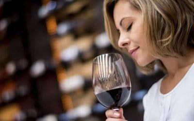 """Bardolino: Museo del Vino della Cantina Zeni, un viaggio tra i """"profumi"""" del vino e dei territori veronesi"""