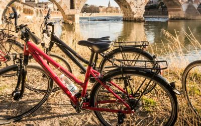 Verona in bicicletta e a piedi: gli itinerari per fare cicloturismo o camminare. Con i consigli utili su dove mangiare e dormire nella terra del grandi vini veronesi