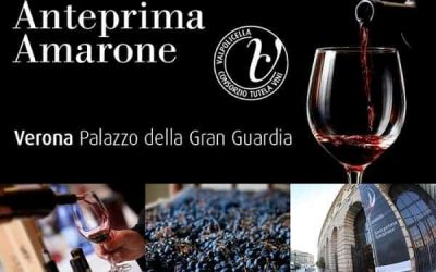 2016 Amarone Preview: the king of the Valpolicella wines. The 2019 Amarone market is positive, reported growing both in Italy and abroad