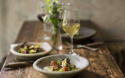 Scoprire la cultura del Vino in tempo di quarantena. I consigli del Sommelier AIS Gianpaolo Breda