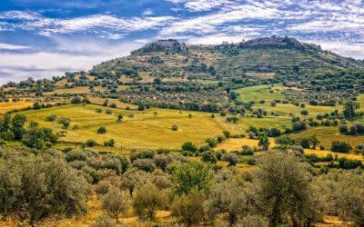 Paesano, il liquore al melograno con i profumi della Sicilia e apprezzato nei pub d'oltremanica