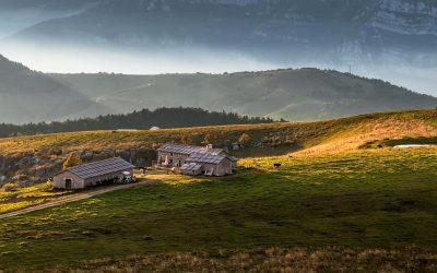 Gli Alti Pascoli della Lessinia iscritti nel Registro nazionale dei Paesaggi Rurali Storici. Soddisfazione nella comunità montana veronese