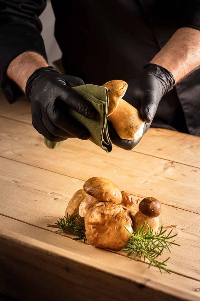 funghi porcini e vini