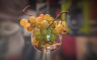Autunno 2020: Appuntamenti col vino e gastronomia a Verona e in Italia nel mese di Ottobre